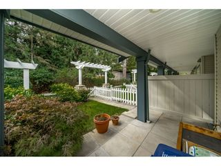 Photo 18: 34 19250 65th Avenue in SUNBERRY COURT: Home for sale
