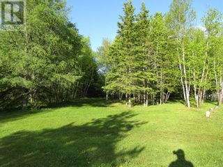 Photo 2: 25B TRANS CANADA Highway in PYNNS BROOK: Vacant Land for sale : MLS®# 1229378