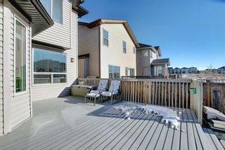 Photo 46: 119 PANTON Landing NW in Calgary: Panorama Hills Detached for sale : MLS®# A1062748