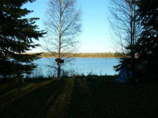 Photo 9: TWP RD 633 A Rge Rd 261A: Rural Westlock County Rural Land/Vacant Lot for sale : MLS®# E3283338
