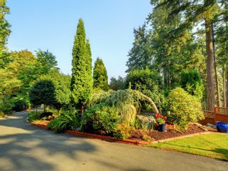 Photo 3: 813 Sayward Rd in : SE Cordova Bay House for sale (Saanich East)  : MLS®# 876772