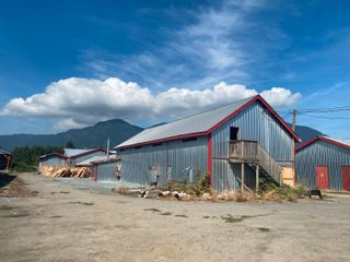 Photo 4: 5097 BOUNDARY Road in Abbotsford: Sumas Prairie House for sale : MLS®# R2604638