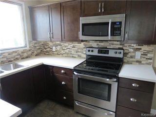 Photo 3: 158 Howden Road in WINNIPEG: Windsor Park / Southdale / Island Lakes Residential for sale (South East Winnipeg)  : MLS®# 1415573
