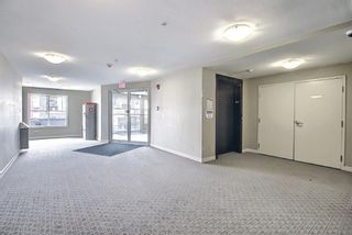 Photo 26: 4305 1317 27 Street SE in Calgary: Albert Park/Radisson Heights Apartment for sale : MLS®# A1107979