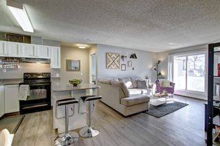 Photo 11: 2011 2011 Edenwold Heights NW in Calgary: Edgemont Apartment for sale : MLS®# A1091382