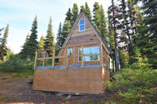 """Photo 23: 277 PRAIRIE Road in Smithers: Smithers - Rural House for sale in """"Prairie Cabin Colony"""" (Smithers And Area (Zone 54))  : MLS®# R2492758"""