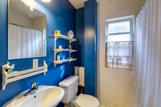 Photo 21: 1024 13 Avenue SW in Calgary: Beltline Detached for sale : MLS®# A1151621