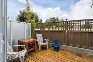 Photo 37: 10 3356 Whittier Ave in Saanich: SW Rudd Park Row/Townhouse for sale (Saanich West)  : MLS®# 841437