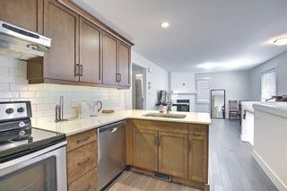 Photo 45: 165 Burma Star Road SW in Calgary: Currie Barracks Detached for sale : MLS®# A1127399
