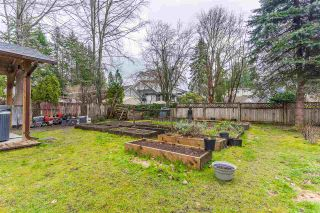 Photo 18: 21578 121 Avenue in Maple Ridge: West Central House for sale : MLS®# R2553627