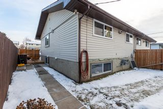Photo 26: 3137 Doverville Crescent SE in Calgary: Dover Semi Detached for sale : MLS®# A1050547