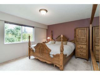 Photo 33: 4848 246A Street in Langley: Salmon River House for sale : MLS®# R2530745