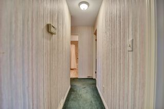 """Photo 16: 5 20848 DOUGLAS Crescent in Langley: Langley City Townhouse for sale in """"brookside terrace"""" : MLS®# R2611248"""