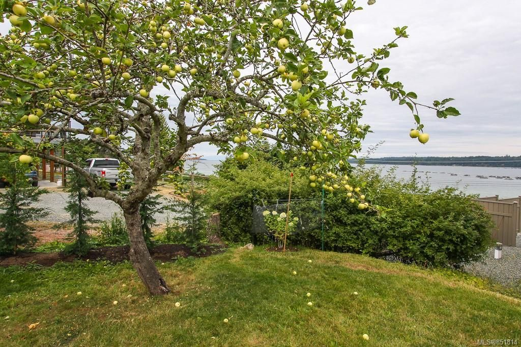 Photo 55: Photos: 191 Muschamp Rd in : CV Union Bay/Fanny Bay House for sale (Comox Valley)  : MLS®# 851814