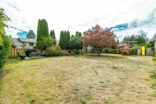 Photo 19: 31858 HOPEDALE Avenue in Abbotsford: Abbotsford West House for sale : MLS®# R2306034