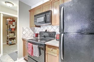 Photo 17: 306 420 3 Avenue NE in Calgary: Crescent Heights Apartment for sale : MLS®# A1105817