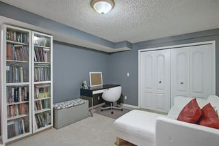 Photo 40: 328 Templeton Circle NE in Calgary: Temple Detached for sale : MLS®# A1074791