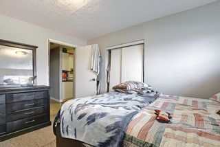 Photo 37: 142 Martindale Boulevard NE in Calgary: Martindale Detached for sale : MLS®# A1111282