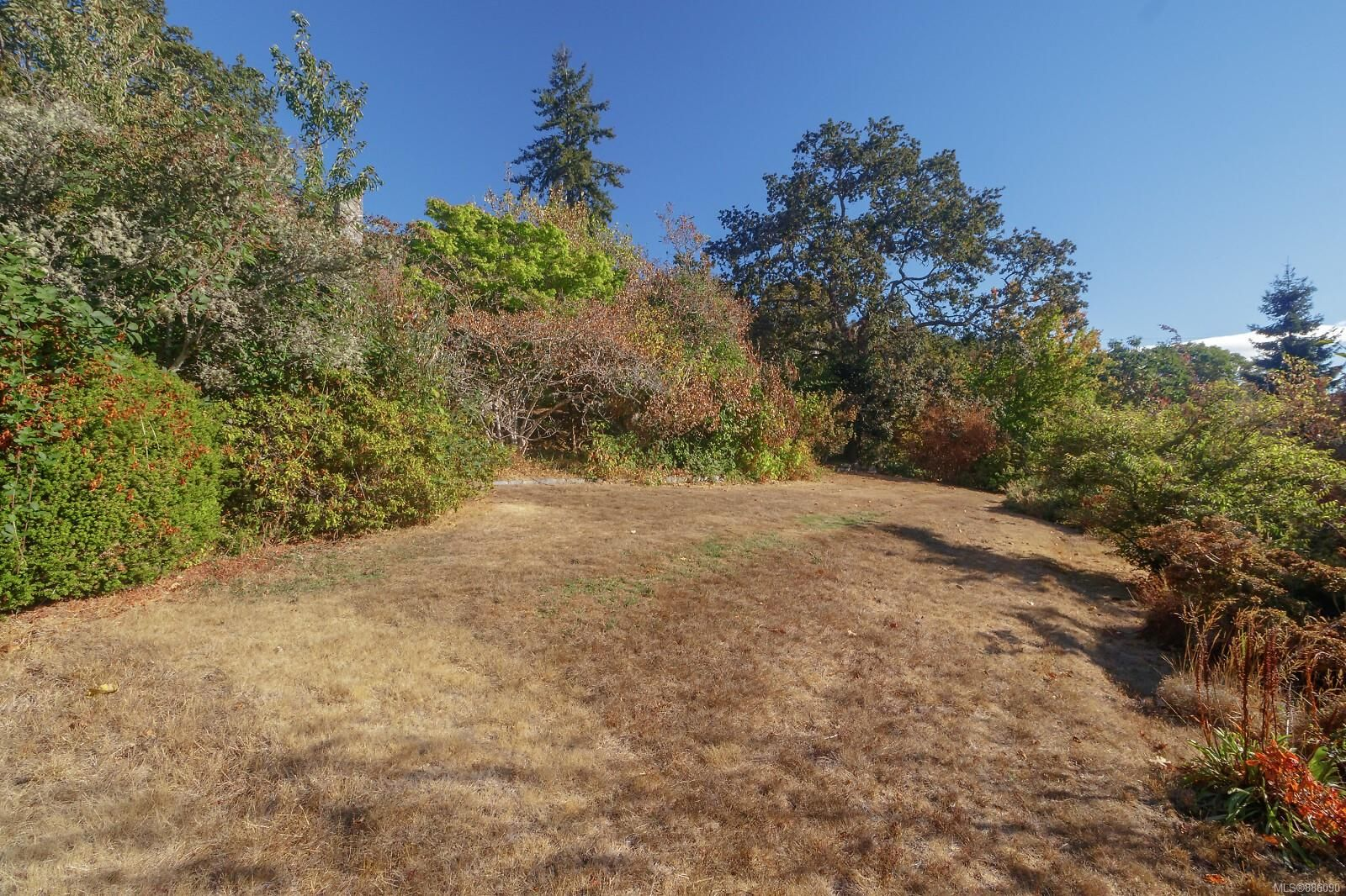 Photo 33: Photos: 4553 Blenkinsop Rd in : SE Blenkinsop House for sale (Saanich East)  : MLS®# 886090