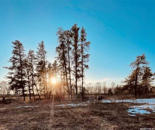 Photo 6: Over 1 acre lots in Hudson Bay: Lot/Land for sale : MLS®# SK850475
