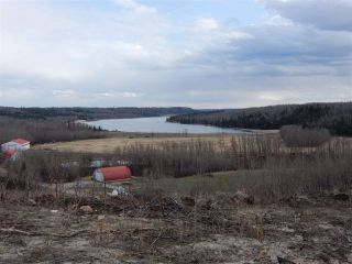 Photo 6: TWP ROAD 492 RANGE ROAD 234: Rural Leduc County Rural Land/Vacant Lot for sale : MLS®# E4218784