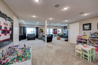 Photo 23: 661 Muirfield Crescent: Lyalta Detached for sale : MLS®# A1061463