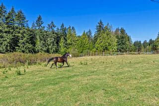 Photo 37: 2521 North End Rd in : GI Salt Spring House for sale (Gulf Islands)  : MLS®# 854306