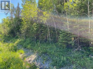 Photo 6: N/A Bay Estates Road S in Sheguiandah, Manitoulin Island: Vacant Land for sale : MLS®# 2095922