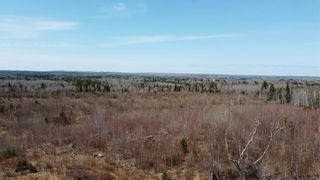 Photo 11: 8532 Trunk 4 Highway in Telford: 108-Rural Pictou County Vacant Land for sale (Northern Region)  : MLS®# 202108300
