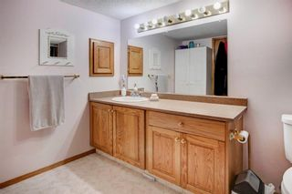 Photo 23: 3 Maple Way SE: Airdrie Detached for sale : MLS®# A1100248