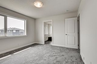Photo 29: 216 Red Sky Terrace NE in Calgary: Redstone Detached for sale : MLS®# A1125516