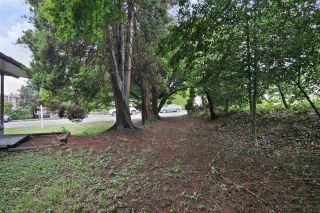 Photo 20: 2602 CAMPBELL Avenue in Abbotsford: Central Abbotsford House for sale : MLS®# R2524225