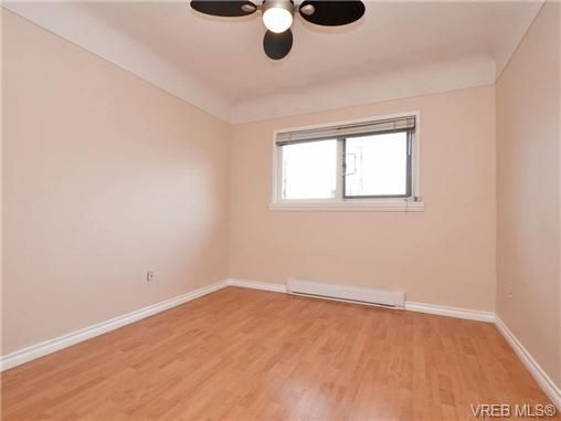 Photo 13: Photos: 4091 Borden St in VICTORIA: SE Lake Hill House for sale (Saanich East)  : MLS®# 720229