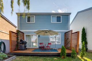 Photo 39: 9238 54 Street in Edmonton: Zone 18 House for sale : MLS®# E4254701