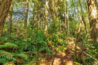 Photo 6: 2550 Seaside Dr in : Sk French Beach Land for sale (Sooke)  : MLS®# 873874
