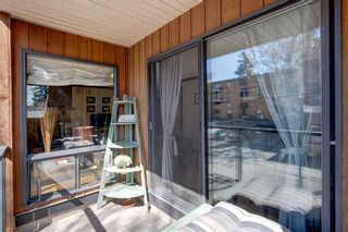 Photo 21: 203 917 18 Avenue SW in Calgary: Lower Mount Royal Apartment for sale : MLS®# A1099255