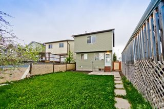 Photo 31: 50 Martindale Mews NE in Calgary: Martindale Detached for sale : MLS®# A1114466