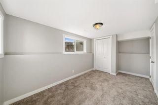 Photo 29: 28 Falton Mews NE in Calgary: Falconridge Detached for sale : MLS®# A1144383