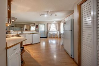 Photo 10: 63 MT Apex Green SE in Calgary: McKenzie Lake Detached for sale : MLS®# A1009034