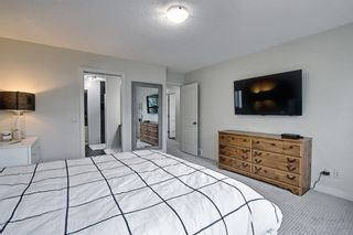 Photo 23: 1484 Copperfield Boulevard SE in Calgary: Copperfield Detached for sale : MLS®# A1137826