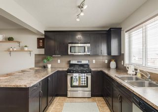 Photo 20: 189 COPPERPOND Road SE in Calgary: Copperfield Detached for sale : MLS®# A1091868