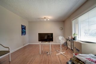 Photo 10: 503 35 Street NW in Calgary: Parkdale Detached for sale : MLS®# A1115340
