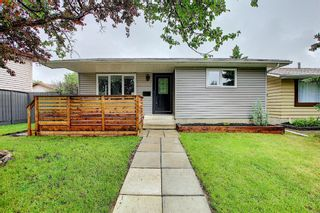 Photo 37: 428 Queensland Place SE in Calgary: Queensland Detached for sale : MLS®# A1123747