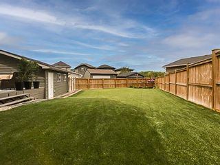 Photo 29: 103 Ravenswynd Rise SE: Airdrie Detached for sale : MLS®# A1064002