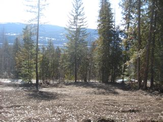 Photo 8: 7269 Estate Drive in Anglemont: Land Only for sale : MLS®# 10135176