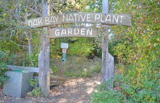 Photo 32: 631 Oliver St in : OB South Oak Bay House for sale (Oak Bay)  : MLS®# 876529