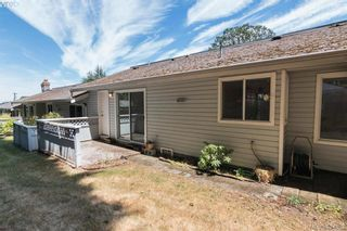 Photo 14: 7 3966 Cedar Hill Cross Rd in VICTORIA: SE Maplewood Row/Townhouse for sale (Saanich East)  : MLS®# 791628