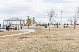 Photo 44: 7919 164 Avenue in Edmonton: Zone 28 House for sale : MLS®# E4239839