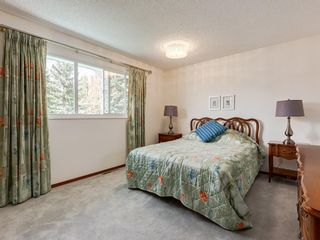 Photo 20: 5132 DALHAM Crescent NW in Calgary: Dalhousie Detached for sale : MLS®# C4244871