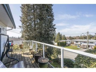 Photo 31: 7984 ASPEN Court in Mission: Mission BC House for sale : MLS®# R2559784